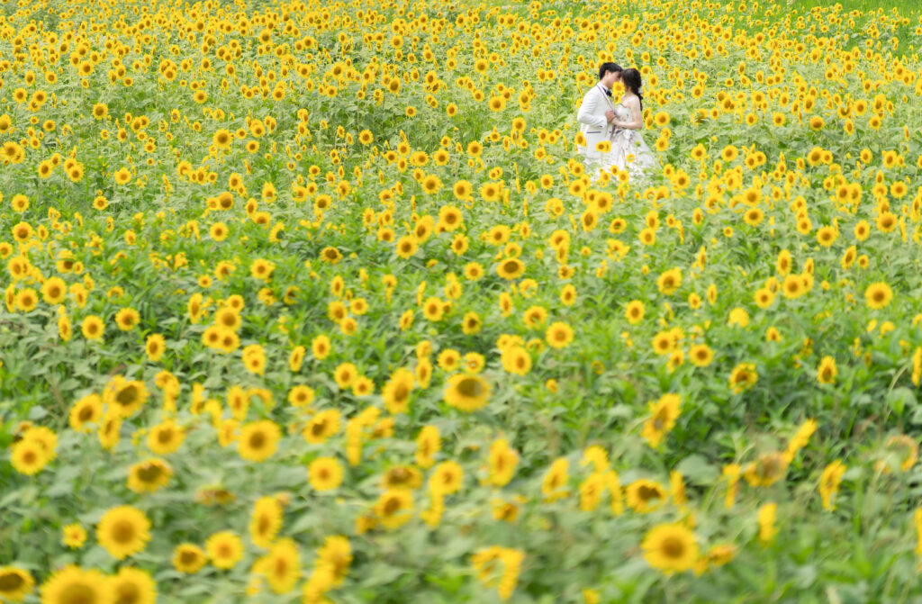 ㊗️東京五輪2020+1 SUMMER Photo キャンペーン
